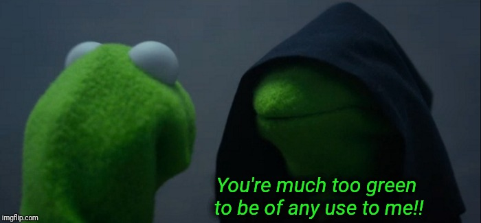 Evil Kermit Meme | You're much too green to be of any use to me!! | image tagged in memes,evil kermit | made w/ Imgflip meme maker