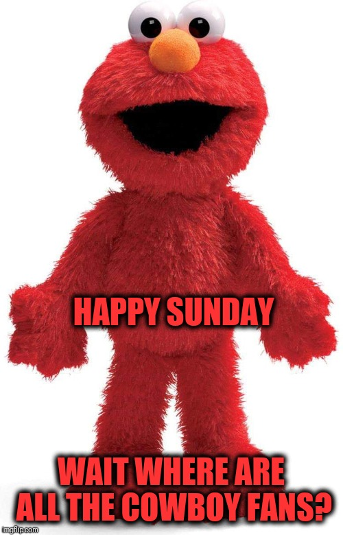 Tickle me Elmo | WAIT WHERE ARE ALL THE COWBOY FANS? HAPPY SUNDAY | image tagged in nfl memes,dallas cowboys,nfl playoffs,elmo | made w/ Imgflip meme maker