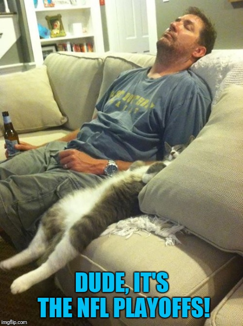 man and cat | DUDE, IT'S THE NFL PLAYOFFS! | image tagged in man and cat | made w/ Imgflip meme maker