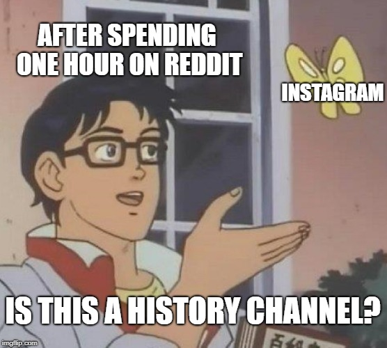 Is This A Pigeon Meme | AFTER SPENDING ONE HOUR ON REDDIT INSTAGRAM IS THIS A HISTORY CHANNEL? | image tagged in memes,is this a pigeon | made w/ Imgflip meme maker