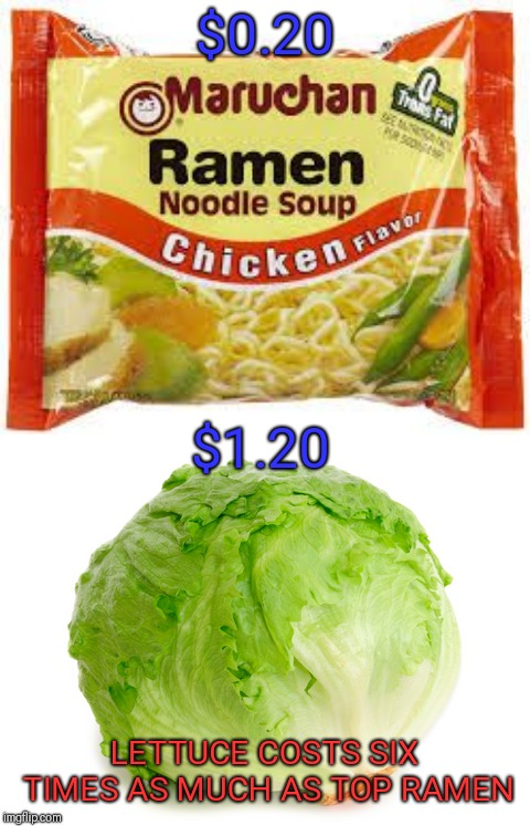 Why are poor people fat? | $0.20 LETTUCE COSTS SIX TIMES AS MUCH AS TOP RAMEN $1.20 | image tagged in ramen,lettuce,memes | made w/ Imgflip meme maker