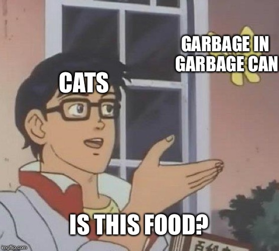 Is This A Pigeon | CATS GARBAGE IN GARBAGE CAN IS THIS FOOD? | image tagged in memes,is this a pigeon | made w/ Imgflip meme maker
