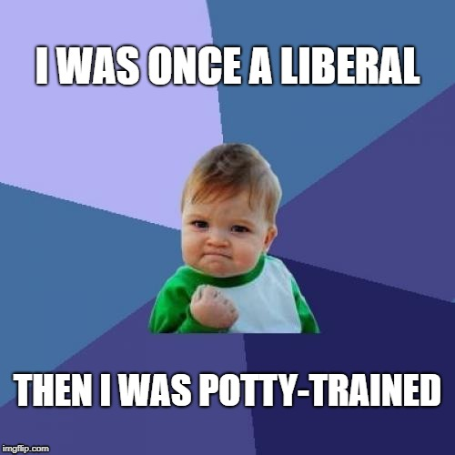 Success Kid | I WAS ONCE A LIBERAL THEN I WAS POTTY-TRAINED | image tagged in memes,success kid | made w/ Imgflip meme maker