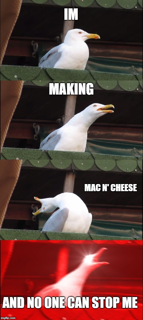 Inhaling Seagull Meme | IM MAKING MAC N' CHEESE AND NO ONE CAN STOP ME | image tagged in memes,inhaling seagull | made w/ Imgflip meme maker