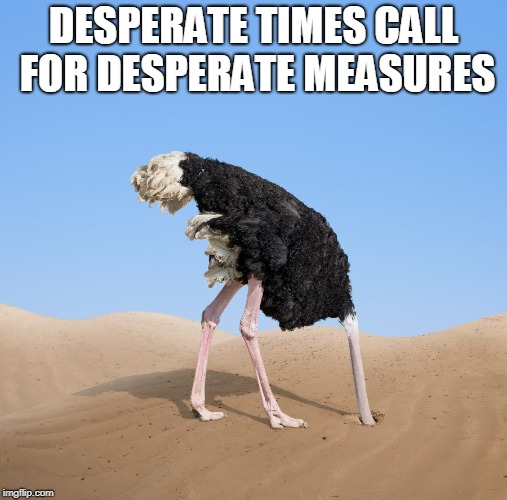 Ostrich | DESPERATE TIMES CALL FOR DESPERATE MEASURES | image tagged in ostrich | made w/ Imgflip meme maker