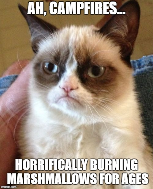 Grumpy Cat Meme | AH, CAMPFIRES... HORRIFICALLY BURNING MARSHMALLOWS FOR AGES | image tagged in memes,grumpy cat | made w/ Imgflip meme maker