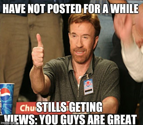 HAVE NOT POSTED FOR A WHILE STILLS GETING VIEWS: YOU GUYS ARE GREAT | image tagged in chuck norris | made w/ Imgflip meme maker