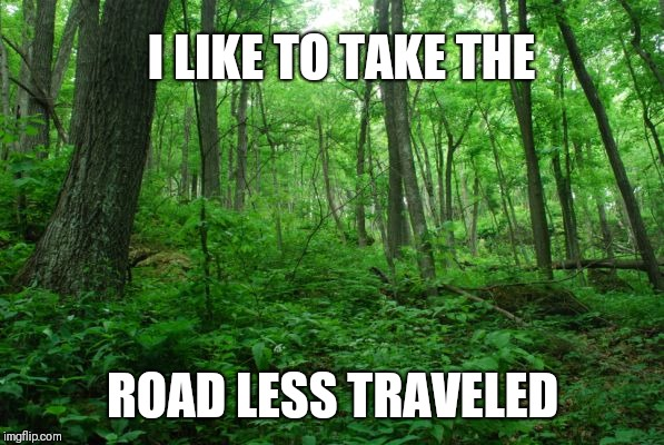 Uh... | I LIKE TO TAKE THE ROAD LESS TRAVELED | image tagged in forrest,road,travel,inspirational | made w/ Imgflip meme maker