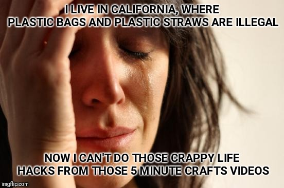 First World Problems Meme | I LIVE IN CALIFORNIA, WHERE PLASTIC BAGS AND PLASTIC STRAWS ARE ILLEGAL NOW I CAN'T DO THOSE CRAPPY LIFE HACKS FROM THOSE 5 MINUTE CRAFTS VI | image tagged in memes,first world problems | made w/ Imgflip meme maker
