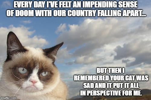 Grumpy Cat Sky Meme | EVERY DAY I'VE FELT AN IMPENDING SENSE OF DOOM WITH OUR COUNTRY FALLING APART... BUT THEN I REMEMBERED YOUR CAT WAS SAD AND IT PUT IT ALL IN | image tagged in memes,grumpy cat sky,grumpy cat | made w/ Imgflip meme maker