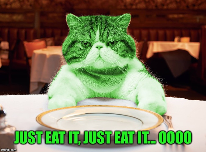 RayCat Hungry | JUST EAT IT, JUST EAT IT... OOOO | image tagged in raycat hungry | made w/ Imgflip meme maker