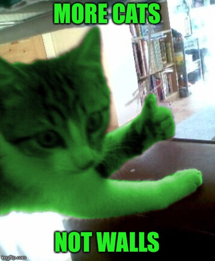 thumbs up RayCat | MORE CATS NOT WALLS | image tagged in thumbs up raycat | made w/ Imgflip meme maker