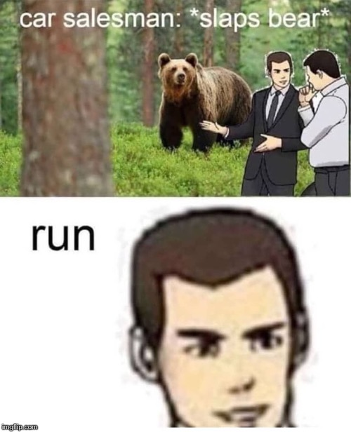 Need I say anything | image tagged in bear,car salesman slaps hood | made w/ Imgflip meme maker