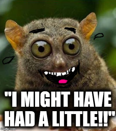 "big eyes smiling critter | ""I MIGHT HAVE HAD A LITTLE!!"" 