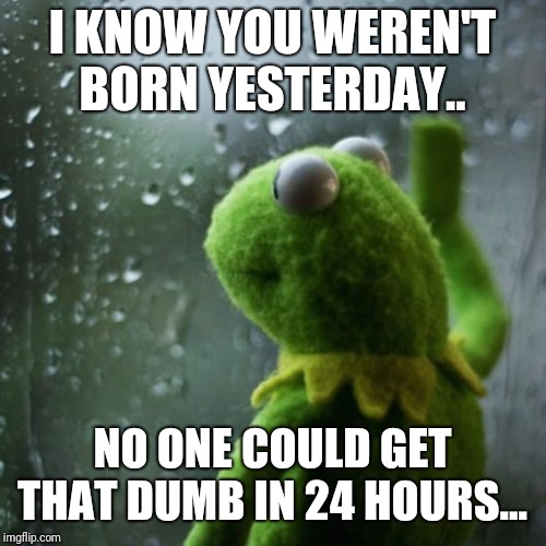sometimes I wonder  |  I KNOW YOU WEREN'T BORN YESTERDAY.. NO ONE COULD GET THAT DUMB IN 24 HOURS... | image tagged in sometimes i wonder | made w/ Imgflip meme maker