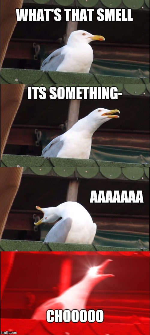 Inhaling Seagull Meme | WHAT'S THAT SMELL ITS SOMETHING- AAAAAAA CHOOOOO | image tagged in memes,inhaling seagull | made w/ Imgflip meme maker