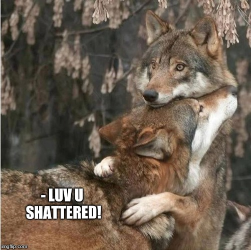 LuvUGirl! | - LUV U SHATTERED! | image tagged in wolf,love,i love you,hugs,kisses | made w/ Imgflip meme maker