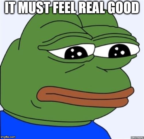 sad frog | IT MUST FEEL REAL GOOD | image tagged in sad frog | made w/ Imgflip meme maker