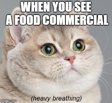 Heavy Breathing Cat | WHEN YOU SEE A FOOD COMMERCIAL | image tagged in memes,heavy breathing cat | made w/ Imgflip meme maker