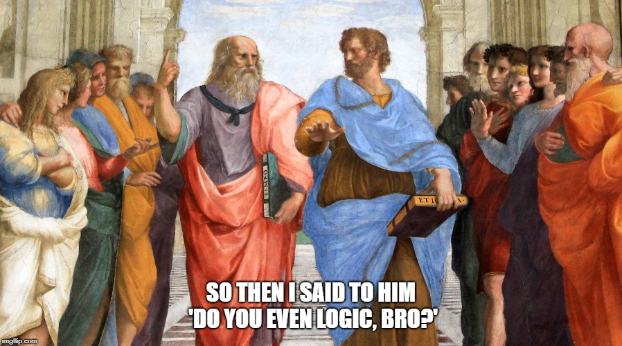 Do you even logic, bro? | SO THEN I SAID TO HIM 'DO YOU EVEN LOGIC, BRO?' | image tagged in logic,aristotle,plato,funny,painting,raphael | made w/ Imgflip meme maker