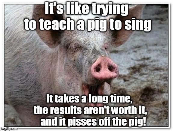 pig | It's like trying to teach a pig to sing It takes a long time,     the results aren't worth it,        and it pisses off the pig! | image tagged in pig | made w/ Imgflip meme maker