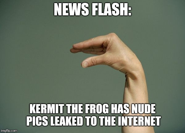 You know you wanted to see them. | NEWS FLASH: KERMIT THE FROG HAS NUDE PICS LEAKED TO THE INTERNET | image tagged in kermit nude | made w/ Imgflip meme maker