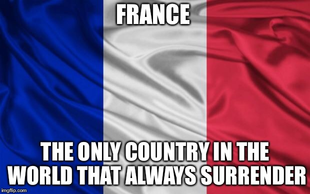 french flag | FRANCE THE ONLY COUNTRY IN THE WORLD THAT ALWAYS SURRENDER | image tagged in french flag,memes,france,surrender | made w/ Imgflip meme maker