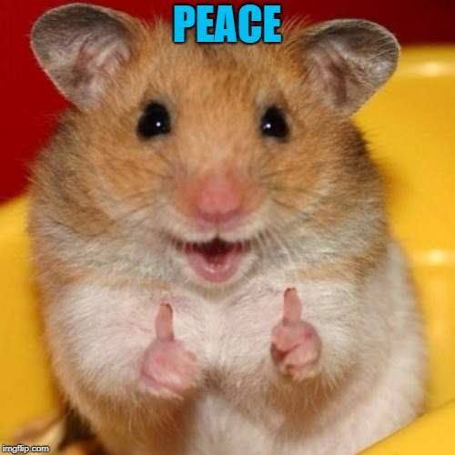 thumbs up | PEACE | image tagged in thumbs up | made w/ Imgflip meme maker