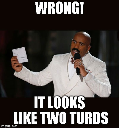 Wrong Answer Steve Harvey | WRONG! IT LOOKS LIKE TWO TURDS | image tagged in wrong answer steve harvey | made w/ Imgflip meme maker