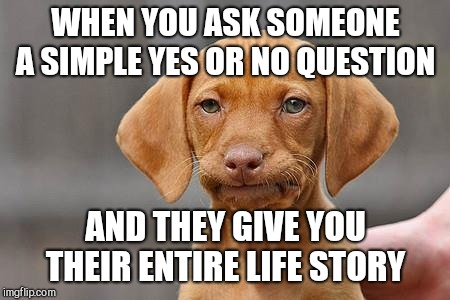 Dissapointed puppy | WHEN YOU ASK SOMEONE A SIMPLE YES OR NO QUESTION AND THEY GIVE YOU THEIR ENTIRE LIFE STORY | image tagged in dissapointed puppy | made w/ Imgflip meme maker