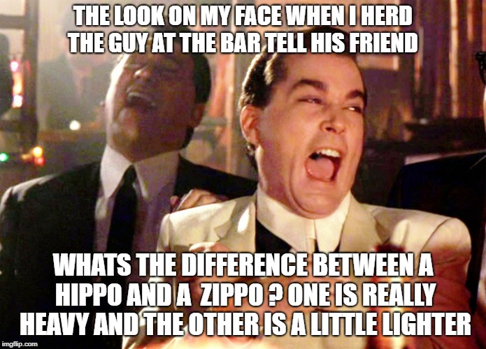 Good Fellas Hilarious Meme | THE LOOK ON MY FACE WHEN I HERD THE GUY AT THE BAR TELL HIS FRIEND WHATS THE DIFFERENCE BETWEEN A HIPPO AND A  ZIPPO ? ONE IS REALLY HEAVY A | image tagged in memes,good fellas hilarious | made w/ Imgflip meme maker