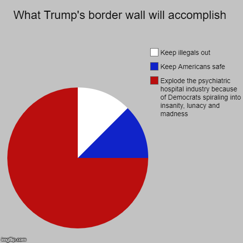 Effects of Trump's border wall | What Trump's border wall will accomplish | Explode the psychiatric hospital industry because of Democrats spiraling into insanity, lunacy an | image tagged in funny,pie charts,border wall,border,trump,democrats | made w/ Imgflip chart maker