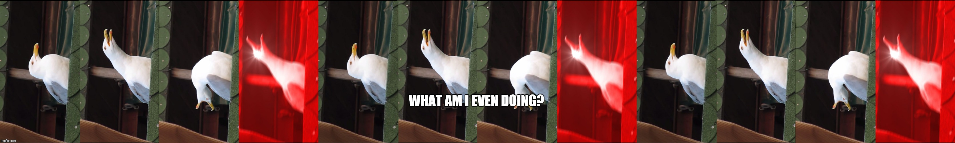 Help.  | WHAT AM I EVEN DOING? | image tagged in memes,inhaling seagull,ummmm,why did i make this | made w/ Imgflip meme maker