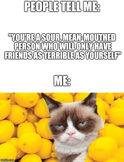 "Me and other humans | PEOPLE TELL ME: ""YOU'RE A SOUR, MEAN-MOUTHED PERSON WHO WILL ONLY HAVE FRIENDS AS TERRIBLE AS YOURSELF"" ME: 