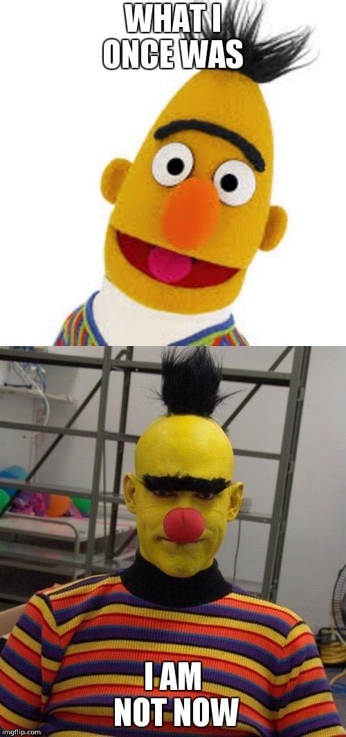 Sesame Street Angry Bert Memes Gifs Imgflip