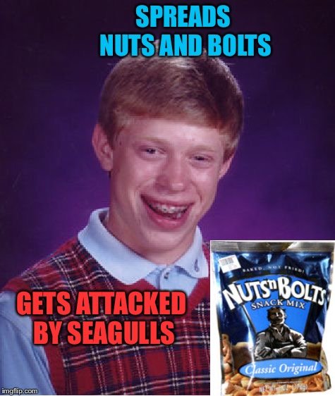 Bad Luck Brian Meme | SPREADS NUTS AND BOLTS GETS ATTACKED BY SEAGULLS | image tagged in memes,bad luck brian | made w/ Imgflip meme maker