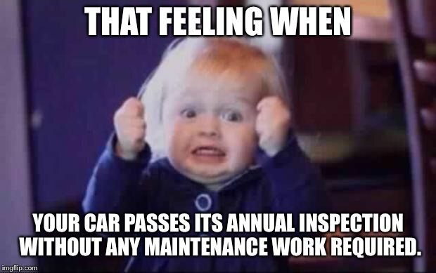 Car Inspection Ped