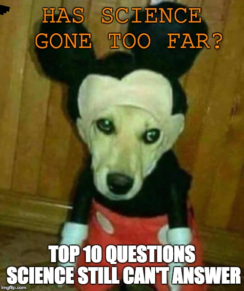 surprised pikachu meme generator