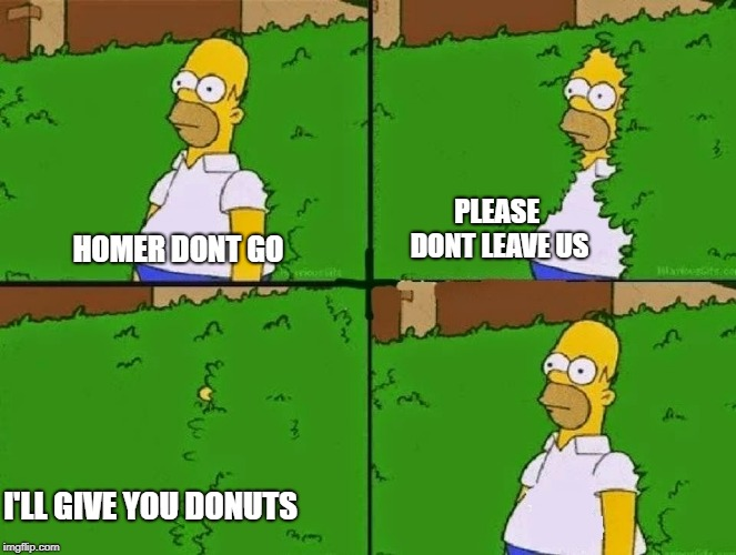 HOMER BUSH | HOMER DONT GO PLEASE DONT LEAVE US I'LL GIVE YOU DONUTS | image tagged in homer bush | made w/ Imgflip meme maker
