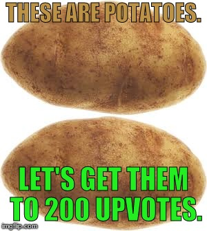 Spud. | THESE ARE POTATOES. LET'S GET THEM TO 200 UPVOTES. | image tagged in memes,spud,potato,upvote | made w/ Imgflip meme maker