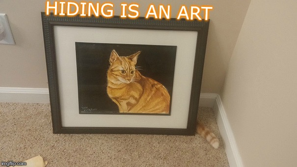 Fair Play | HIDING IS AN ART | image tagged in memes,cats,hide and seek,i will find you,camouflage,funny | made w/ Imgflip meme maker