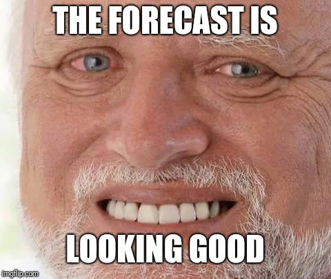 harold smiling | THE FORECAST IS LOOKING GOOD | image tagged in harold smiling | made w/ Imgflip meme maker