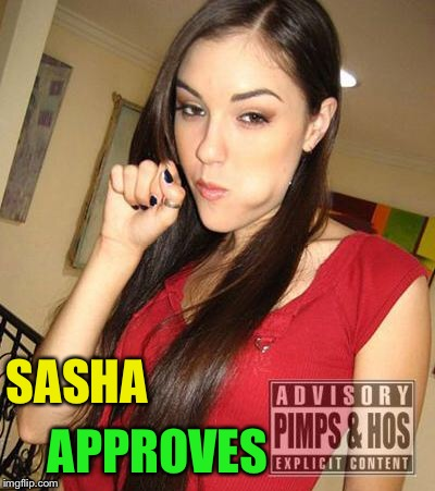 Sasha Grey BJ | SASHA APPROVES | image tagged in sasha grey bj | made w/ Imgflip meme maker