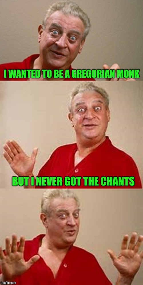 I'd go nuts listening to that all day!!! | I WANTED TO BE A GREGORIAN MONK BUT I NEVER GOT THE CHANTS | image tagged in bad pun dangerfield,memes,bad puns,gregorian chant,monks,rodney dangerfield | made w/ Imgflip meme maker