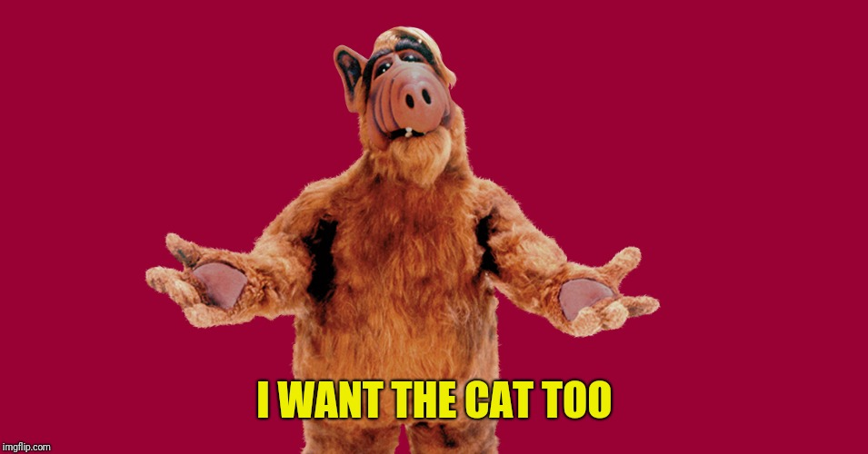 Alf | I WANT THE CAT TOO | image tagged in alf | made w/ Imgflip meme maker