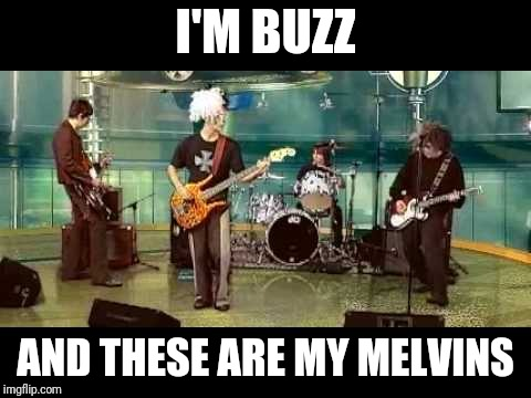 I'M BUZZ AND THESE ARE MY MELVINS | made w/ Imgflip meme maker