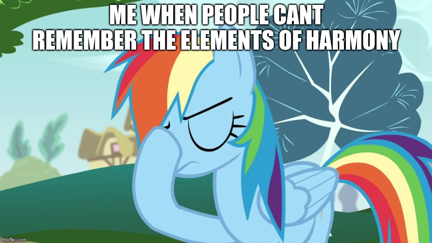 Frustrated MLP | ME WHEN PEOPLE CANT REMEMBER THE ELEMENTS OF HARMONY | image tagged in frustrated mlp | made w/ Imgflip meme maker