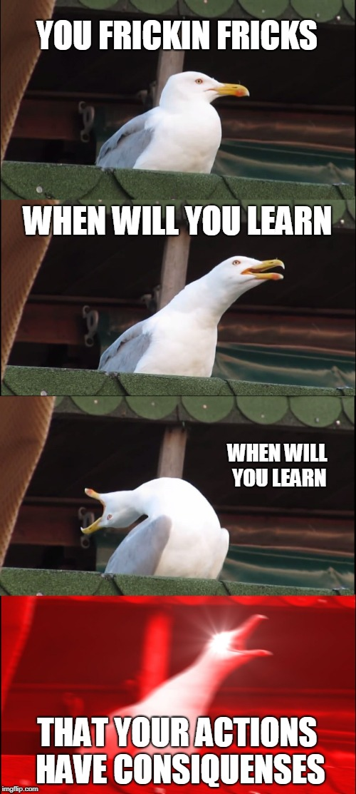 Inhaling Seagull Meme | YOU FRICKIN FRICKS WHEN WILL YOU LEARN WHEN WILL YOU LEARN THAT YOUR ACTIONS HAVE CONSIQUENSES | image tagged in memes,inhaling seagull | made w/ Imgflip meme maker