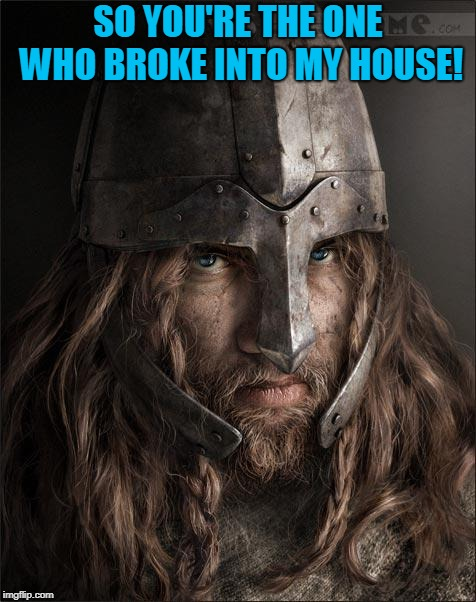 viking | SO YOU'RE THE ONE WHO BROKE INTO MY HOUSE! | image tagged in viking | made w/ Imgflip meme maker