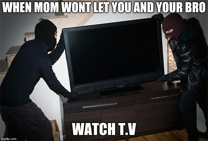 Image tagged in stealing tv - Imgflip